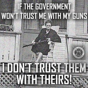 Government and guns
