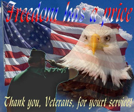 Freedom and Vets